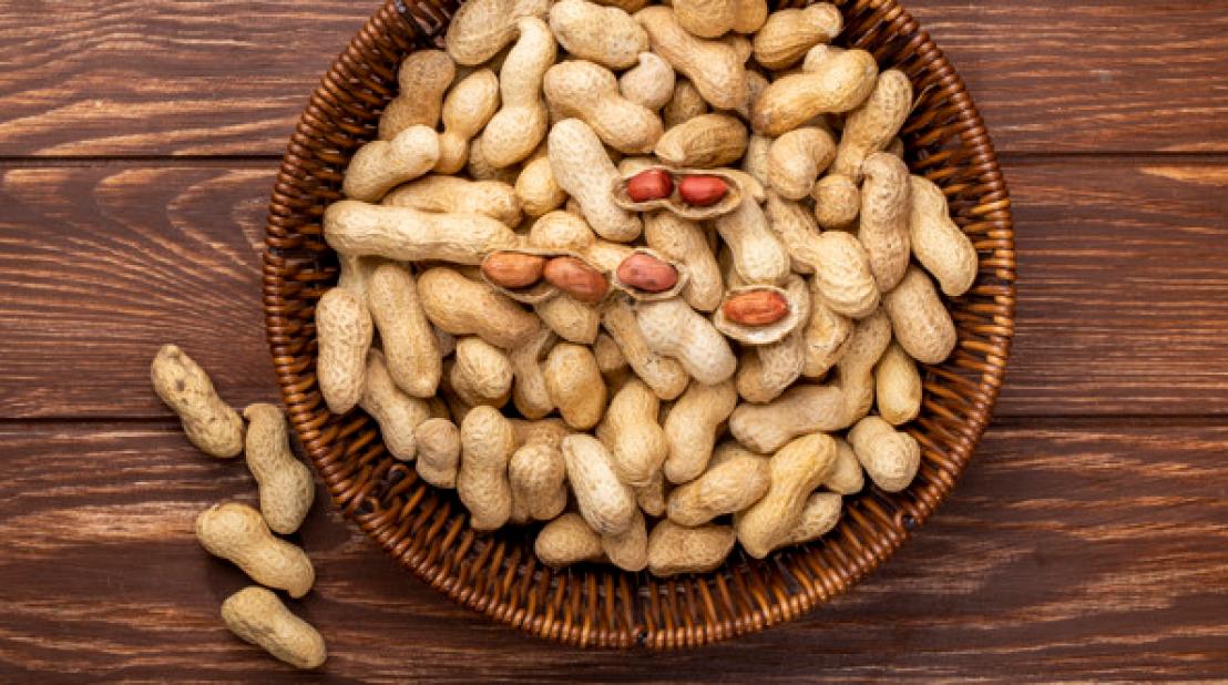 Ler mais sobre Indústria fatura R$ 204 milhões com snacks de amendoim, de julho de 2020 a junho de 2021